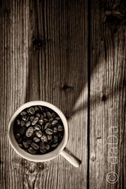 coffee shadow