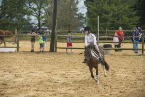 horse_show-2.jpg