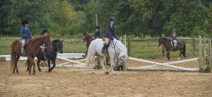 horse_show-29.jpg