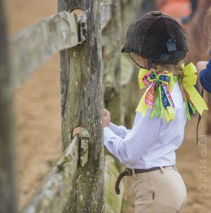 horse_show-31.jpg
