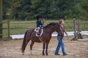 horse_show-35.jpg