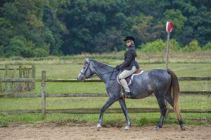 horse_show-44.jpg