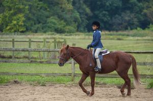 horse_show-46.jpg