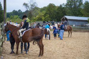 horse_show-54.jpg
