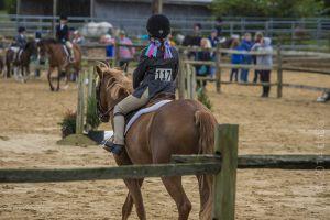 horse_show-63.jpg
