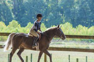 horse_show-71.jpg