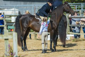 horse_show-80.jpg