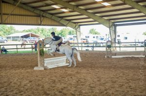 horse_show-102.jpg