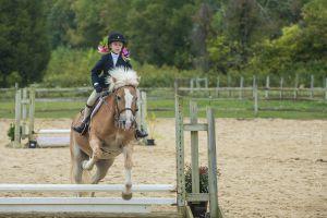 horse_show-110.jpg