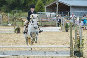horse_show-117.jpg