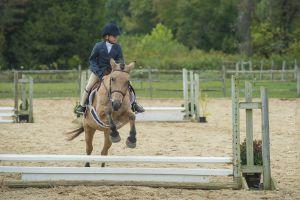 horse_show-118.jpg