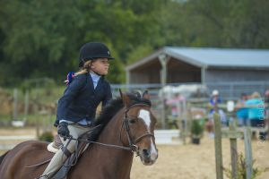 horse_show-122.jpg