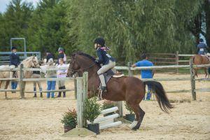 horse_show-123.jpg