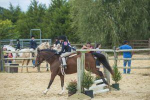 horse_show-124.jpg