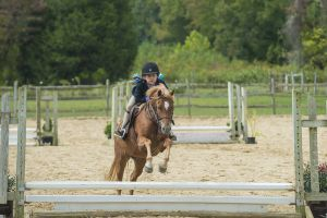 horse_show-128.jpg