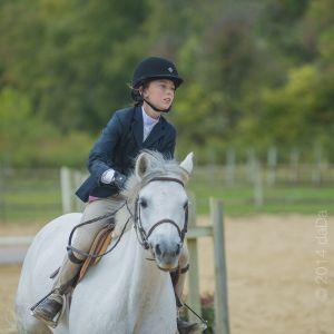 horse_show-130.jpg