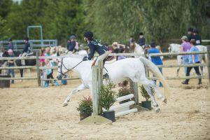 horse_show-131.jpg