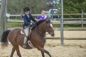 horse_show-133.jpg