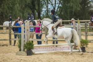 horse_show-137.jpg