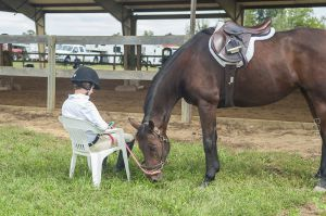horse_show-141.jpg