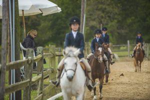horse_show-146.jpg