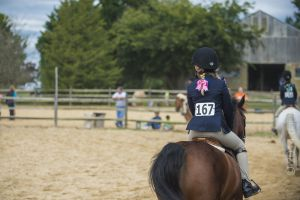 horse_show-150.jpg