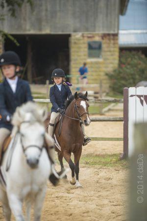 horse_show-151.jpg
