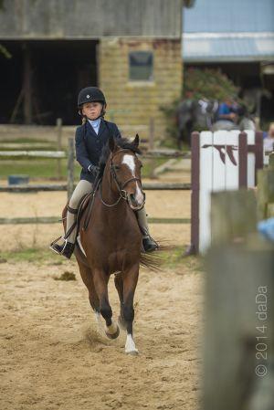 horse_show-153.jpg
