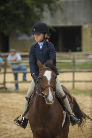 horse_show-154.jpg