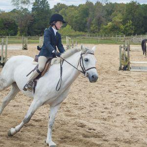 horse_show-156.jpg