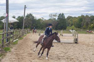 horse_show-157.jpg