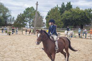 horse_show-159.jpg