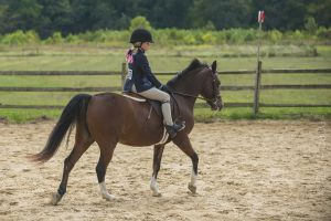 horse_show-161.jpg