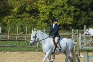 horse_show-81.jpg