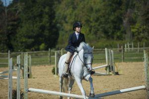 horse_show-90.jpg