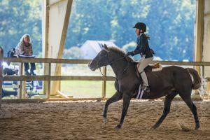 horse_show-94.jpg